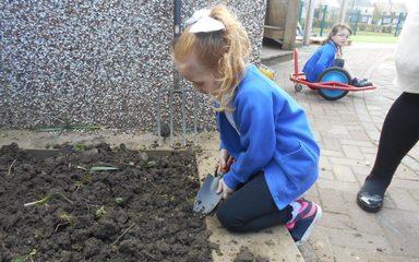 Planting Fun