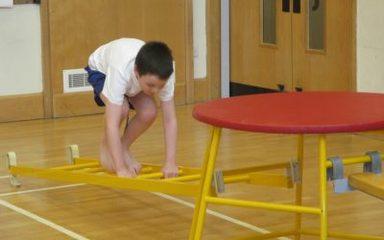 Gymnastics Fun!
