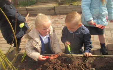 Gardening Professionals