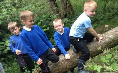 Forest school explorers !