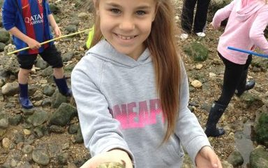 Rock Pooling Fun!