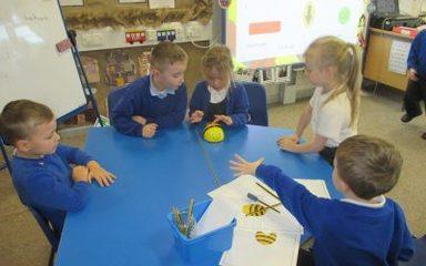 Amazing Bee-Bots!