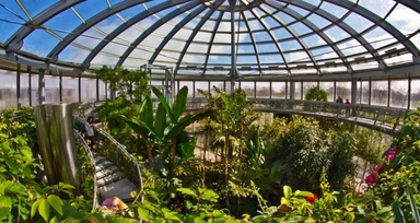 Year 6 – Winter Gardens