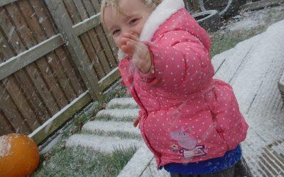 Snow flakes.