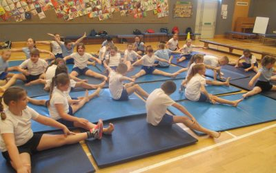 Budding Gymnasts