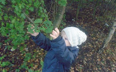 Forest School Friday.